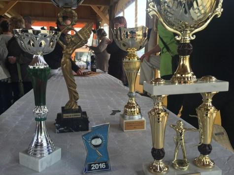 les trophées gagnés à Erondelle