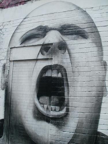 Mouth. Flickr CC image by emmettgrrrl