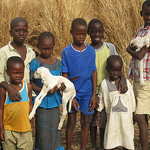 Thankful gift recipients from Heifer International