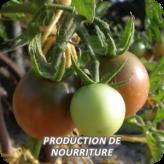 Principe_Production_nourriture