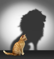 shutterstock_152680601-2-cat-with-lion-shadow-2