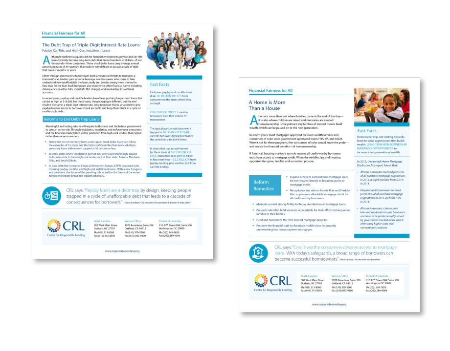 Raleigh Graphic Design Firm Sample fact sheet for nc nonprofit