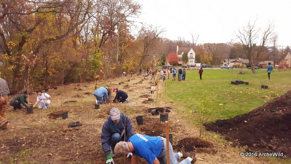 ArcheWild Supplies Tookany/Tacony-Frankford Watershed Planting