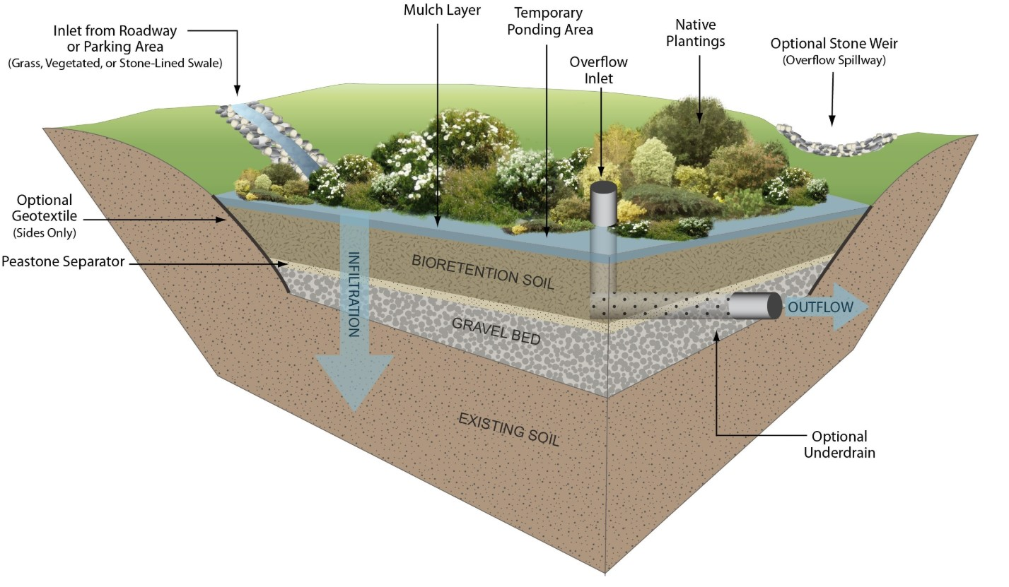 rain garden engineering diagram
