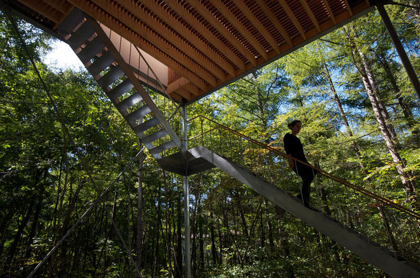 Stair detail in forest - Pilotis in a Forest House / Go Hasegawa