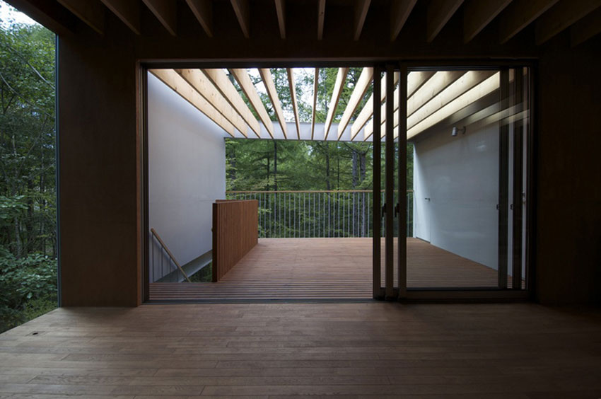 Pilotis in a Forest House  Go Hasegawa  ArchEyes