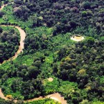 Yanomami communal Shabono in Venezuela
