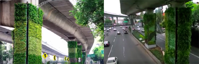 The Vertical Gardens of Mexico City Highway