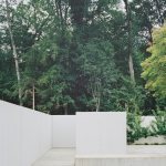 Patio tree - Five Patio Houses in Meilen / Think Architecture