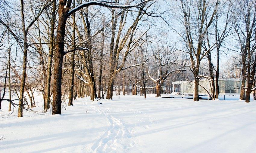 Snowed The Farnsworth House / Mies van der Rohe