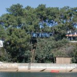 House in the Pines Cap Ferret House LACATON VASSAL