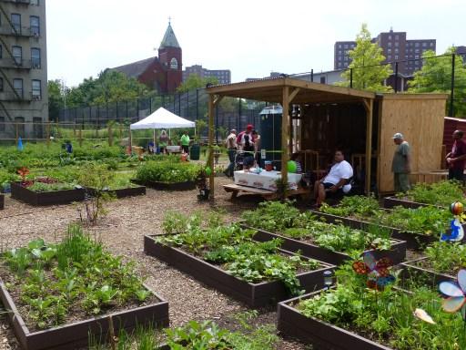 Market Garden Bronx