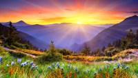Действия, пробуждающие вечные качества души