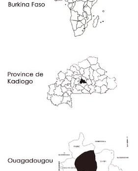 reinventer-le-village-a-ouagadougou-metropole-du-3eme-millenaire-3