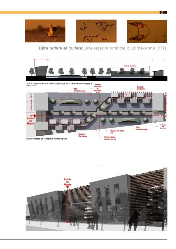 portrait-de-cedric-blemand-architecte-hmonp-eternel-creatif14