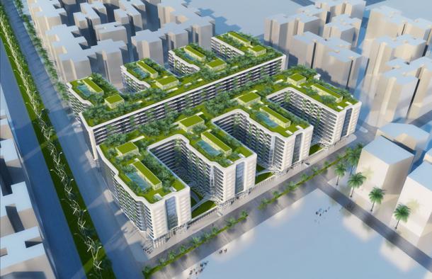 le-caire-verdir-durablement-et-verticalement-la-capitale-egyptienne-6