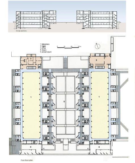 Salk Institute Plan