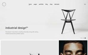 Blaze Best WordPress Portfolio Themes