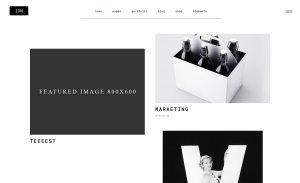 Ion Best WordPress Portfolio Themes