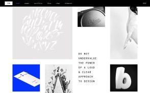 Ion Best WordPress Portfolio Themes