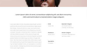 Stockholm Architecture Resume WordPress Theme