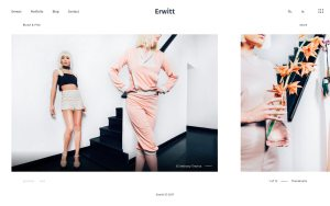 Erwitt Best Photography WordPress Themes