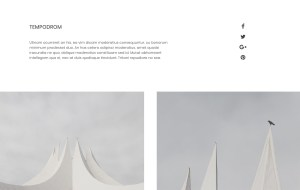 Art Best Portfolio Wordpress Themes