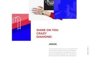 Diorama Best Portfolio Wordpress Themes