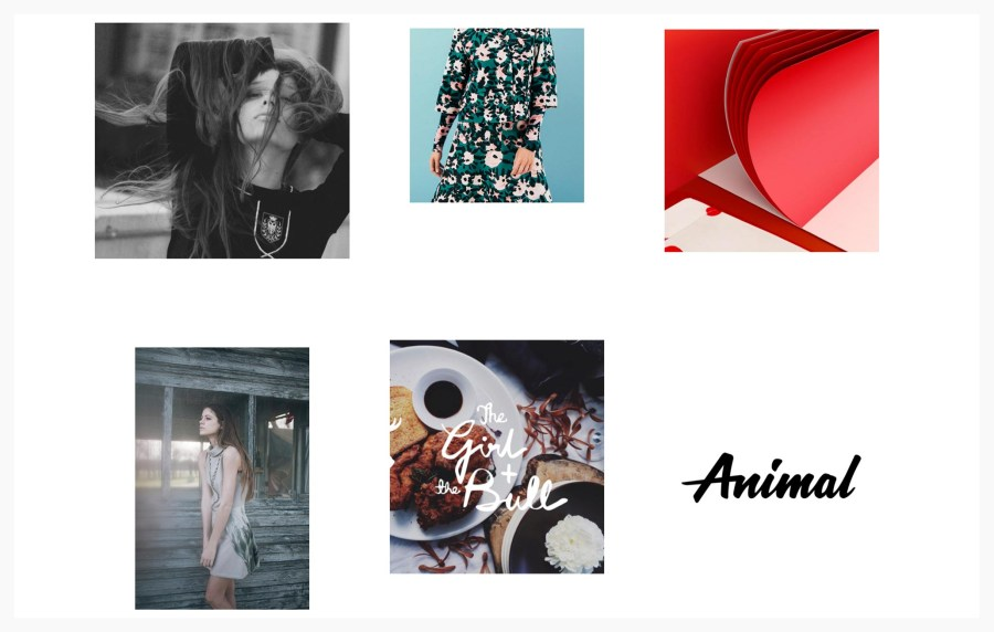 Pile Best Portfolio WordPress Themes