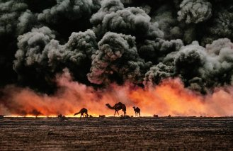steve-mccurrey-1991-camel-and-oil-fields-kuwait