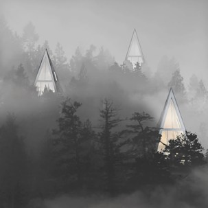 Primeval-Symbiosis-Single-Pole-House-Community