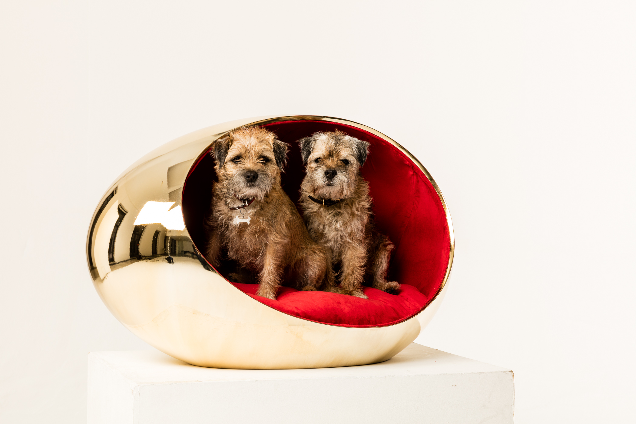 "Haus Designer Bowwow Haus London Showcases ""barkitecture"" By Zaha Hadid Design, Spark Architects, Chris Dyson Architects, And More 