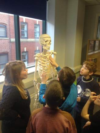 "Emma and YAC members - ""so, the clavicle is ... here?"""