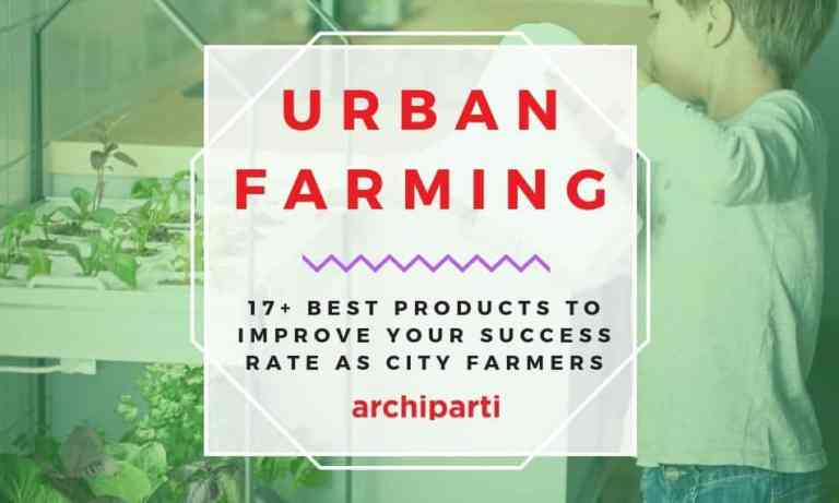 Urban Farming | 17+ Best Products to Improve your Success Rate as City Farmers