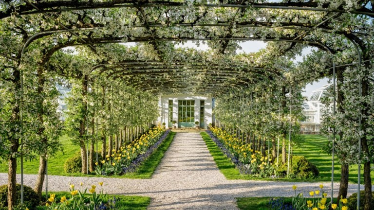 Step Inside Bunny Mellon's Glorious Gardens