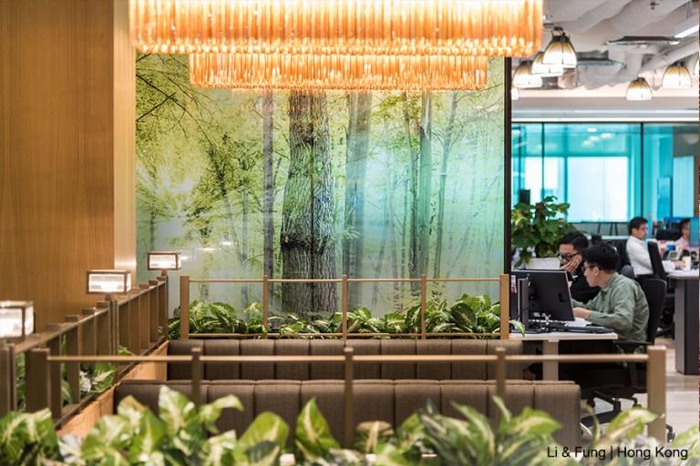 【辦公室綠化設計2020】改善空氣也招財的室內植物添置方法你了解嗎?