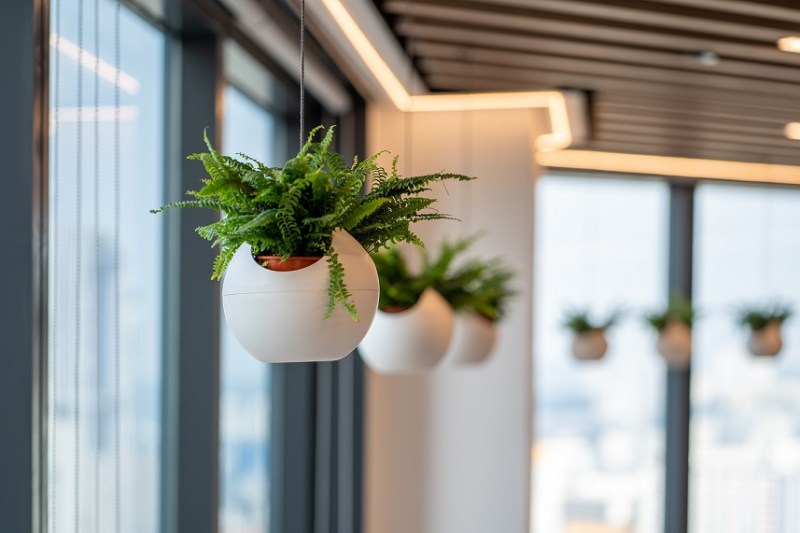 Biophilia and employee wellbeing are key elements in Forrester Singapore's workplace strategies