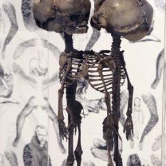 Skeleton Chair Coffee Desk Pillow Archiploitation | Bas Van Beek
