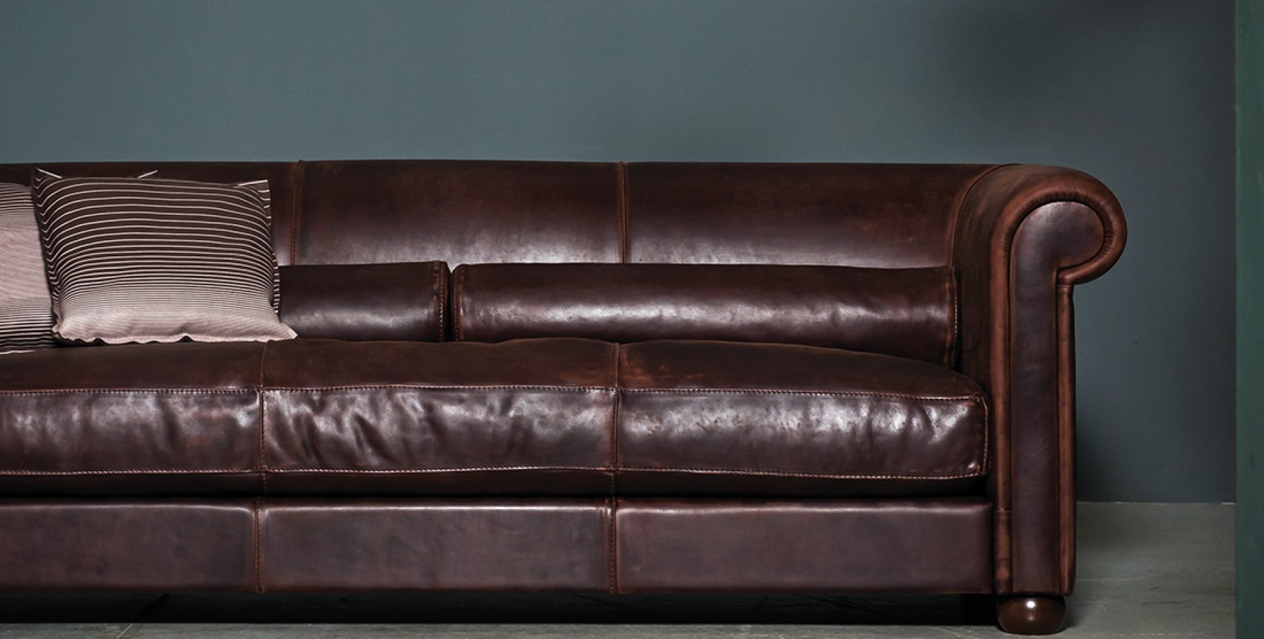 leather sofas auckland queen sleeper sectional sofa baxter nz review home co