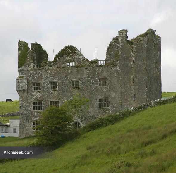 lemenagh_castle_lge