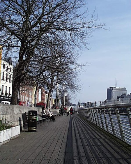 boardwalk_trees_lge