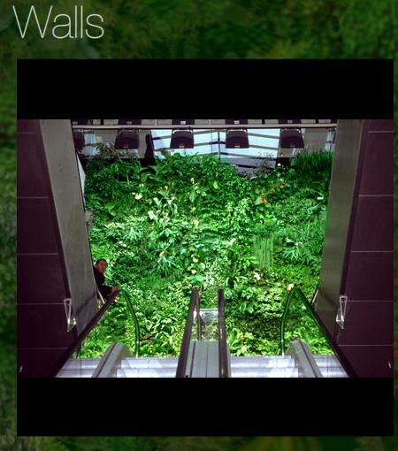 Begrunte Wand Innen Casa Verde Innen Aussenbegrunung Ag