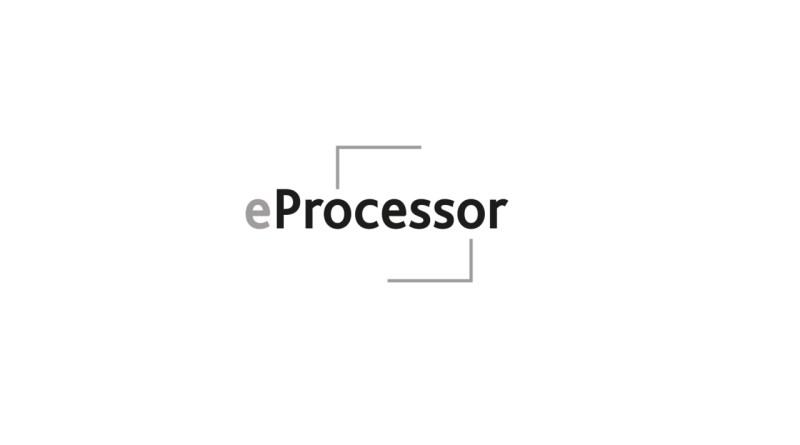 eProcessor, RISC-V, BSC