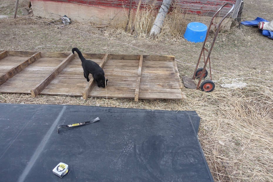 The Chicken Coop And Greenhouse Projects Rebooted