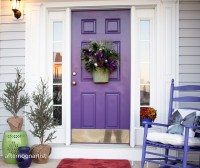 Amazing front doors design