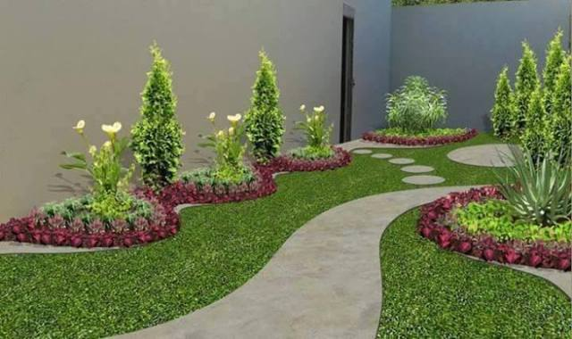 Variety of Plants for Backyard Park