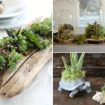 Beautiful And Charming Indoor Garden Designs (18)