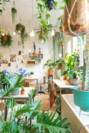 Beautiful And Charming Indoor Garden Designs (86)