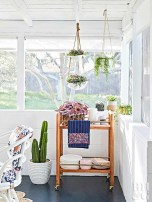 Garden With Funny Cactus For Beautiful And Charming Indoor Garden Designs