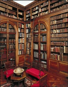 Home Library Design Ideas (67)